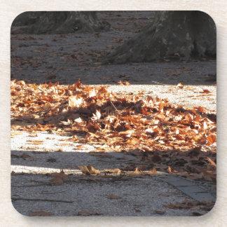 Totes Blätter, das aus den Grund im Fall liegt Untersetzer