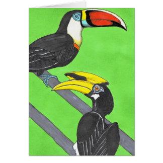 Toucan u. Hornbill Karte