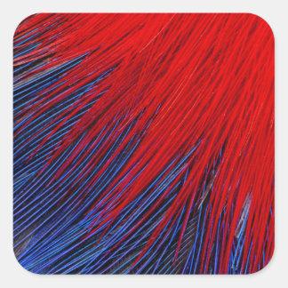 Toucanet Feder abstrakt Quadratischer Aufkleber