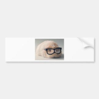 Tragende Gläser des niedlichsten Meerschweinchens Autoaufkleber