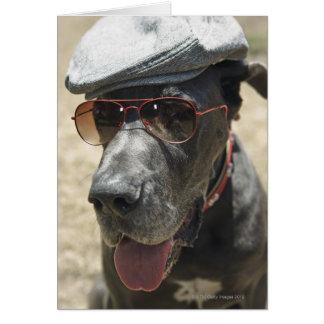 Tragender Hut und Sonnenbrille der Deutschen Dogge Karte