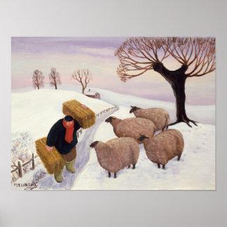 Tragendes Heu zu den Schafen im Winter Poster