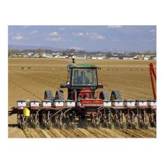 Traktor, der einen Maissaatgutpflanzer zieht Postkarte