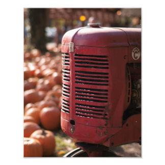 Traktor im Kürbis-Flecken Fotodruck