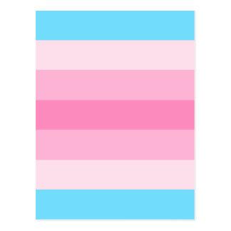 transfeminine Flagge Postkarte