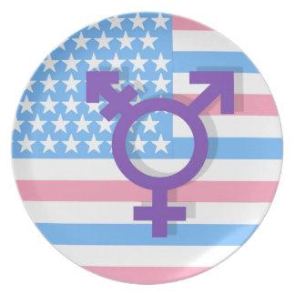 Transgenderflagge Melaminteller