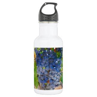 Trauben auf der Rebe in Napa Valley Kalifornien Edelstahlflasche