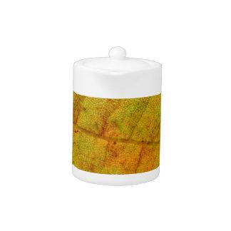 Trauben-Blatt-Unterseite