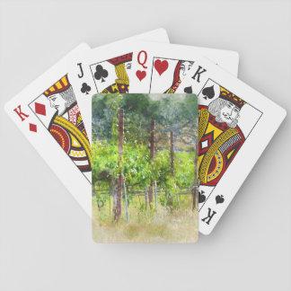 Trauben-Reben im Frühjahr in Napa Valley Spielkarten