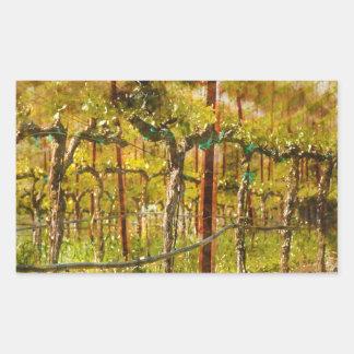 Trauben-Reben im Weinberg während des Frühlinges Rechteckiger Aufkleber