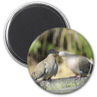 Trauer-Tauben Runder Magnet 5,7 Cm