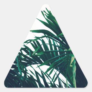 Träumen von Costa Rica Dreieckiger Aufkleber