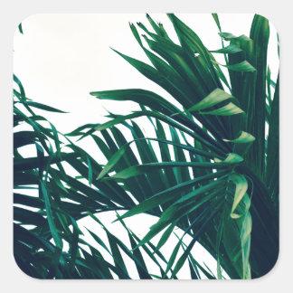 Träumen von Costa Rica Quadratischer Aufkleber