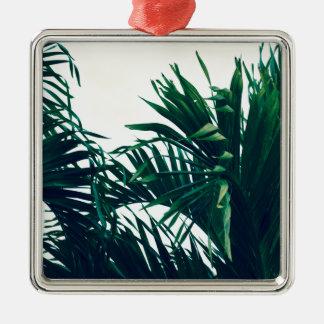 Träumen von Costa Rica Silbernes Ornament