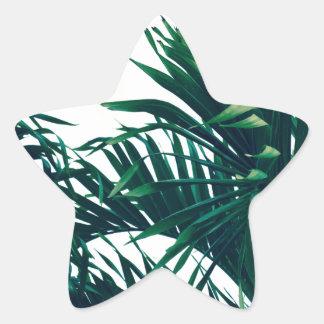 Träumen von Costa Rica Stern-Aufkleber