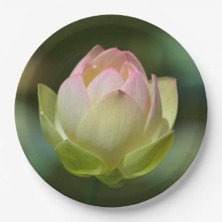 Träumerische Lotus-Blüte Pappteller 22,9 Cm