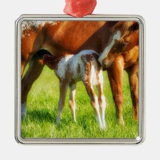 Träumerisches, neues Pferdefohlen mit Mutter Silbernes Ornament