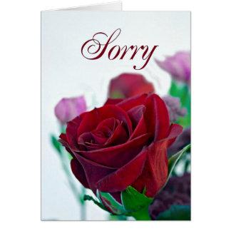 Traurige Karte mit einer Roten Rose