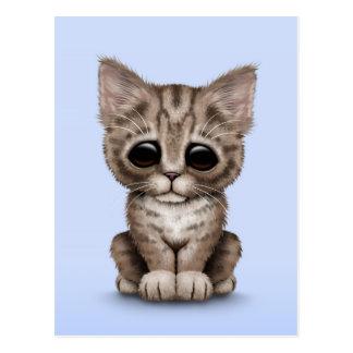 Traurige niedliche browntabby-kätzchen-katze auf postkarte