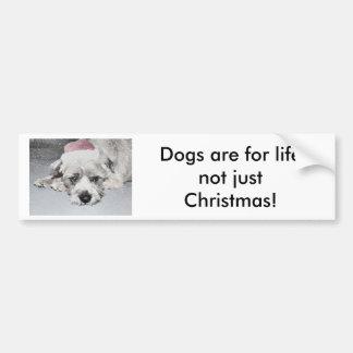 Trauriger kleiner Weihnachtshund Autoaufkleber