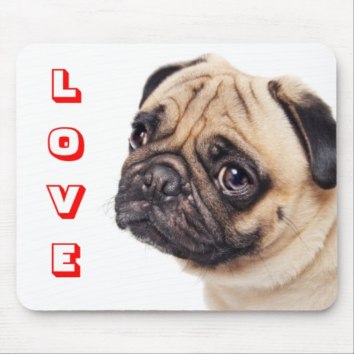 Trauriger Liebe-Mops-Welpen-Hund Mousepad