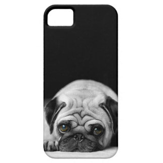 Trauriger Mops iPhone 5 Case