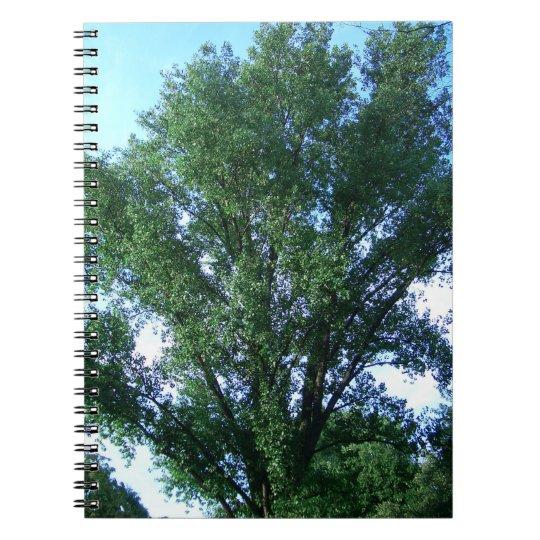Tree Spiral Fotonotizbuch Spiral Notizblock