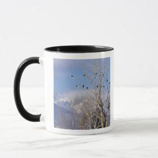 Treeful der Weißkopfseeadler nähern sich Hamilton Tasse