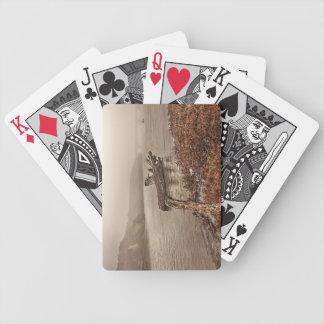 Treibholz im Wasser Bicycle Spielkarten