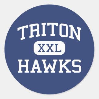 Triton - Falken - hoch - Erwin-North Carolina Aufkleber