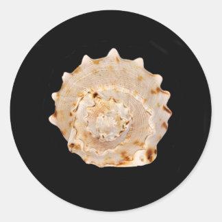 Tritonshorn-Muschel-Aufkleber Runder Aufkleber
