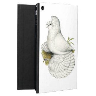 Trompeters-Tauben-Weiß