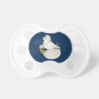 Trompeters-Tauben-Weiß Schnuller