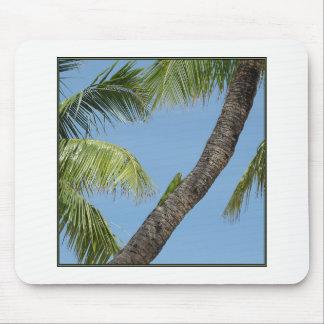 Tropische Ansicht - ein mousepad