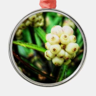 Tropische Beeren 2 Silbernes Ornament