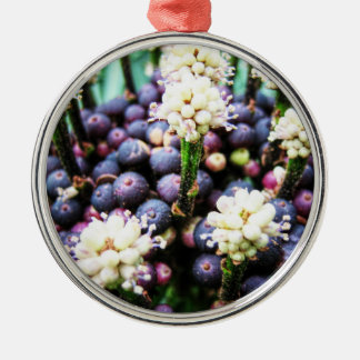 Tropische Beeren 3 Silbernes Ornament