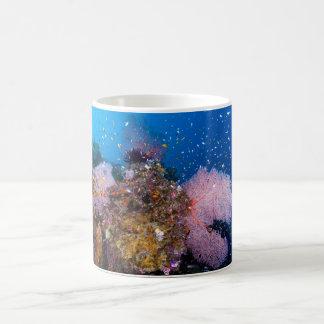 Tropische Fische des Korallenmeers Kaffeetasse