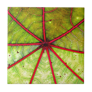 Tropische Gießmaschinen-Blatt-Struktur Keramikfliese