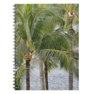 Tropische Hawaii-Palmen Notizblock