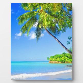 Tropische Insel Fotoplatte