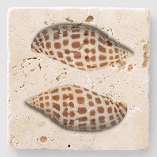Tropische Junonia Seashells-Untersetzer Steinuntersetzer