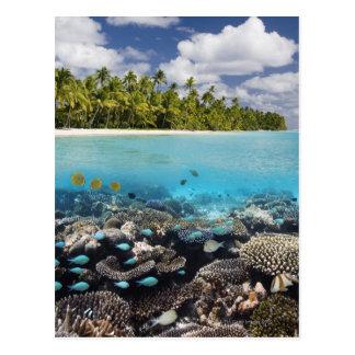 Tropische Lagune in SüdAri Atoll in Postkarten