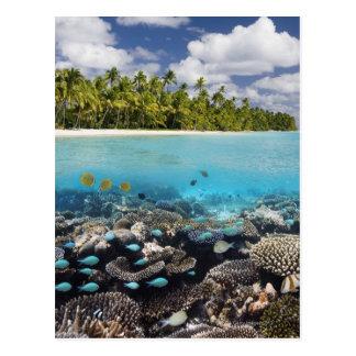 Tropische Lagune in SüdAri Atoll Postkarte