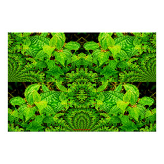 Tropische Neugier-coole Natur-abstraktes Poster
