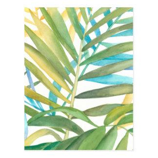 Tropische Palmblätter Postkarte