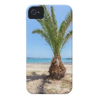 Tropische Palme auf sandigem Strand iPhone 4 Case-Mate Hülle