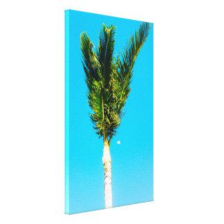 Tropische Palme Leinwanddruck
