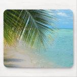 Tropische Palme und Ozean auf Strand Mousepad