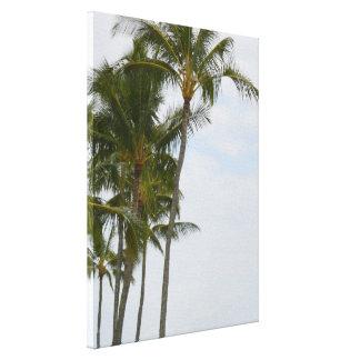 Tropische Palmen bei Poipu Leinwanddruck