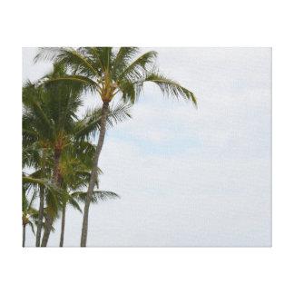 Tropische Palmen Hawaiis bei Poipu Leinwanddruck